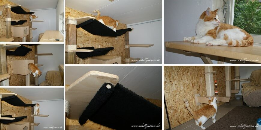 Frustpinkler-Galerie2