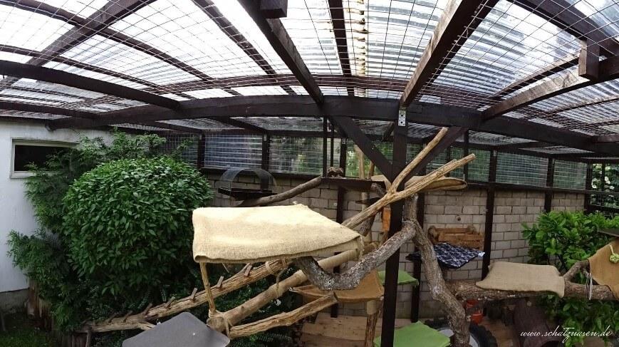 Freigehege Katzen - ein Panoramablick auf den oberen Bereich des Geheges