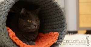 Katzenblog - DIY Katzentunnel