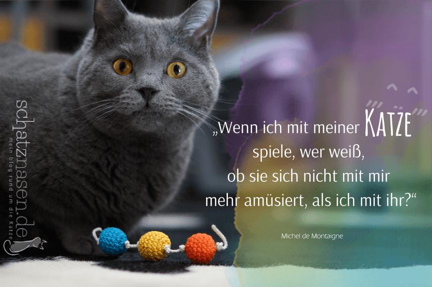 Spruchbilder Katzensprueche Katzenweisheiten Katzenzitate Wenn ich mit meiner Katze spiele