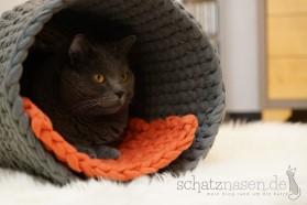 Katzenspielzeug Häkeln Archive Katzenblog Schatznasen